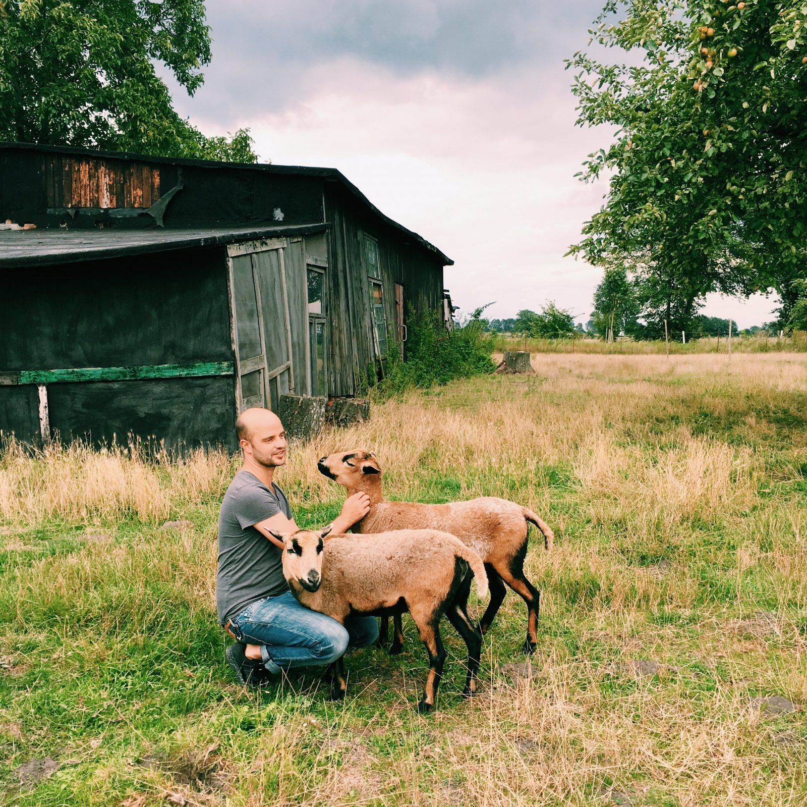 Marcus Werner mit seinen Schafen
